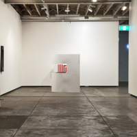 Exhibition 'Taint' at Firstdraft Gallery, 2010